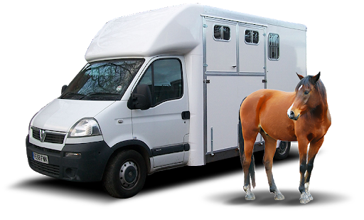 Motorised horseboxes need to comply with ULEZ